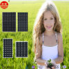 High Efficiency Competitive Price Poly 300W China Solar Panel