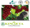 100% Organic Fertilizer Provides Nutrients Necessary for Plant Growth