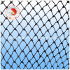 Polyester Multifilament Fishing Net