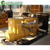 LPG LNG CNG Gas Generator Sets