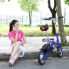 Wholesale Portable Smart Electric Bicycle with Seat