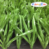 50mm Certified Supreme Football Artificial Grass