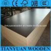 12mm Film Faced Plywood Eucalyptus Plywood