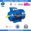 Y2 Cast Iron Three Phase Electrical Motor (Y2-632-2)