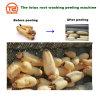 The Lotus Root Washing Peeling Machine