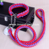 Wholesale Strong Nylon Dog Collar and Leash for Sports