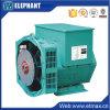 10.8kw 13.5kVA Stamford Tech AC Brushless Alternator