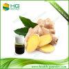 Natural Ginger Oleoresin Zingiber Officinale Rosc. Food Grade Oil