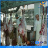 Professional Halal Style Sheep Slaughtering Equipment with CE Certificate