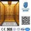 AC Vvvf Gearless Drive Passenger Elevator Without Machine Room (RLS-229)