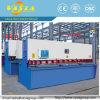 CNC Shearing Machine with Servo Motor and High Precision Ball Screw