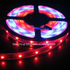 Grb LED Flexible Strip Light with Ws2811 IC Driver