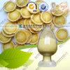 Anti Aging Root Powder Astragaloside IV Cycloastragenol Astragalus Extract