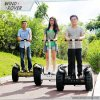 Hottest Wind-Rover V4+ off Road 36V/42A 1600W Taiwan Motor Mountain Bike with Electric Chariot