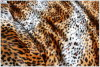 Velboa Print Fabric Ls-Vb-004