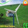 2000W Wind Generator with Fiberglass-Reinforced Plastic Blades and Fine Cast Steel Generator