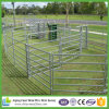 Horse Round Yards Make a Controlled Safe Working Area