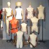 Many Kinds of Female Torso Mannequin