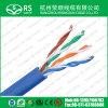 AMP CAT6A UTP LAN Cable Fluke Test Pass