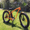 Ristar Fat Tire Electric Bicycles for Snow