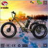 Aluminum Alloy Fat Tire Electric Tricycle with Good Quality