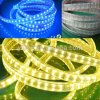 ETL High Lumen LED Strip Double Row 5050 Outdoor Light