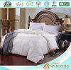 Classica Wholesale Washable Synthetic Duvet/Comforter for Home (hotel)
