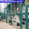 Corn Flour Mill for South America Market (100T/24H)