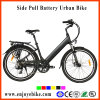 Cheap 36V 10ah Electric Bike Li Ion Battery Electric Bicycle E-Bike (PE-TDF05Z)