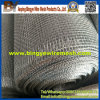 High Quality Latest Stainless Steel Crimped Wire Mesh