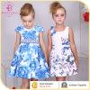 Butterfly Princess Dress Girl Frocks