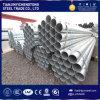 HDG Galvanized Steel Tube / Pipe / Gi Tubing / Galvanized Tube Price Per Ton