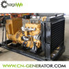 50Hz/60Hz Three Phase Output Easy Start Small Gas Generator
