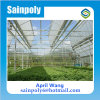 Easily Installed PC-Sheet Multi-Span Greenhouse for Growing System