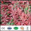 Plastic Artificial Garden Boxwood Fence Plat