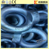 C15e Carbon Steel Galvanized Steel DIN580 Lifting Eye Bolts M16