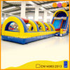 Rainbow Inflatable Water Long Slide (AQ1008)