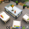 Outdoor Recycle Wood WPC Decking for Patio (TW-02)