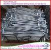 High Quality L/J Type Plain Zinc Plated HDG Galvanized Anchor Bolts Foundation Bolt, L-Bolt