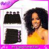 Malaysian Curly Hair Afro Kinky Curly Hair 3 Bundles Lot 7A Unprocessed Malaysian Kinky Curly Virgin Hair Human Hair Extensions