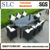 Wicker Furniture/Wicker Dining Set/Rattan Chair (SC-B8849-B)