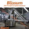 Bottle Conveyor System / Machine / Equipment