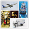 Consolidate a-Class Logistics Service From China to Brazil Shipping