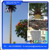 Steel Telecommunication Bionic Palm Tree Tower /Decorative Palm Tree