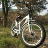 2016 Hot Sale E-Bike with Fat Tire China
