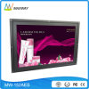 15.4 Inch Open Frame LCD Digital Signage (MW-152AES)