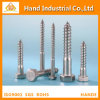 Stainless Steel 304/316 M10 DIN571 Coach Screw Wood Screw