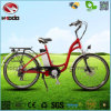 Alloy Frame 250W Hydraulic Front Fork Electric City Road Bicycle