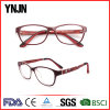 Hot Sale Colorful Good Quality Kids Tr90 Eyeglasses Manufacturers (YJ-G81108)