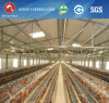 a-Type Hot Galvanized Pullet Chicken Cage (A-3L90-120)